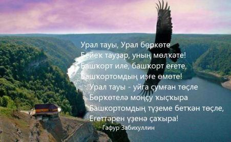 Башкортостан. Беркут над рекой.