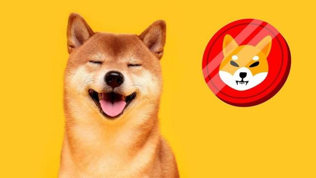 Shiba Inu joke token rose 331% and made it into the top 20 cryptocurrencies  thanks to Ilon Musk   gagadget.com