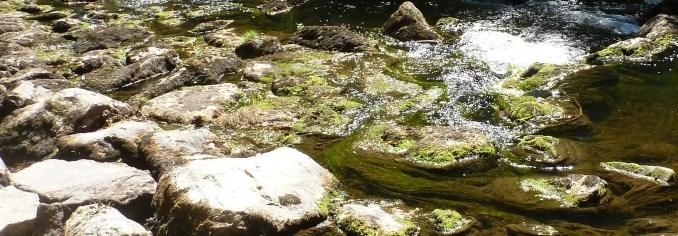 Die Ahr bei Niedrigwasser
