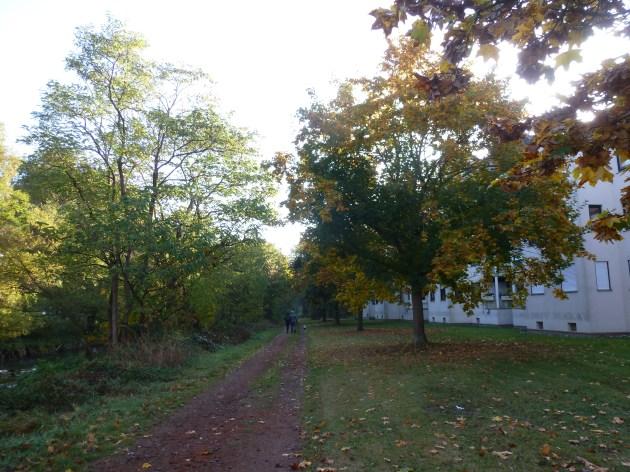 Der Herbst kommt mit aller Macht