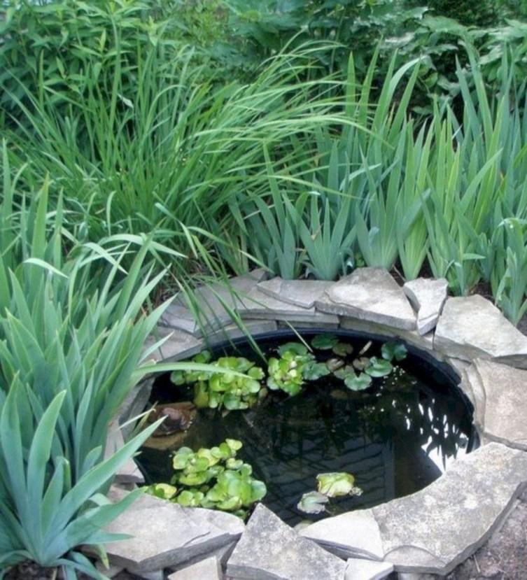 Stunning Backyard Aquarium Ideas 05
