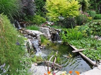 Stunning Backyard Aquarium Ideas 08