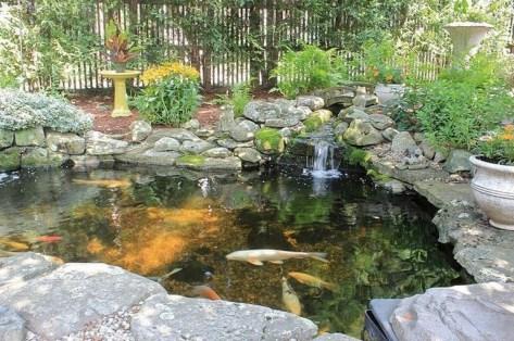 Stunning Backyard Aquarium Ideas 18