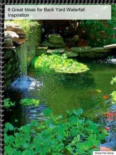 Stunning Backyard Aquarium Ideas 20