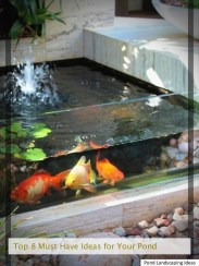 Stunning Backyard Aquarium Ideas 39