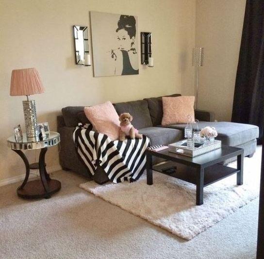 Astonishing Rental Apartment Decorating Ideas 04