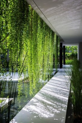 Latest Home Patio Design With Hanging Plants 45