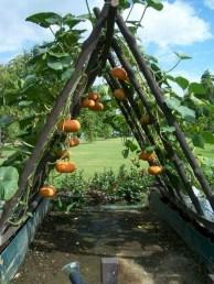 Outstanding Diy Raised Garden Beds Ideas 22