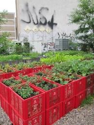 Outstanding Diy Raised Garden Beds Ideas 26