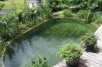Perfect Backyard Home Design Ideas With Swimming Pool 45