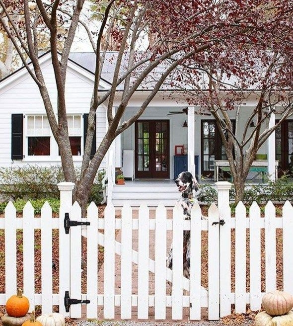 Wonderful Front Yard Ideas With Contemporary Fence 01