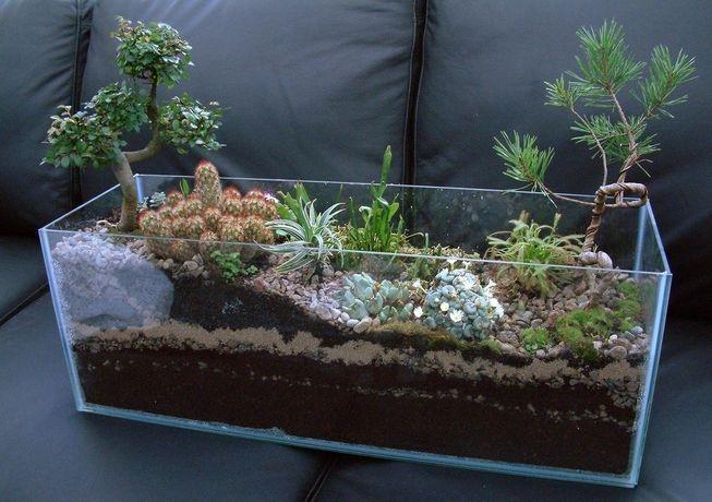 Fascinating Diy Terrariums Ideas To Try This Seasonl 31