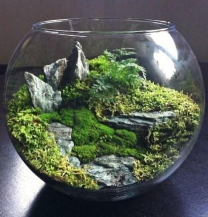 Fascinating Diy Terrariums Ideas To Try This Seasonl 35