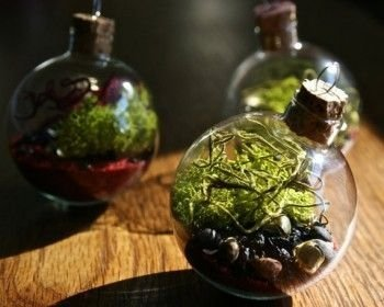Fascinating Diy Terrariums Ideas To Try This Seasonl 36