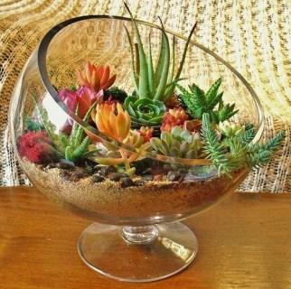 Fascinating Diy Terrariums Ideas To Try This Seasonl 40