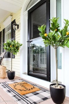 Lovely Summer Decorating Ideas For Front Porch 34