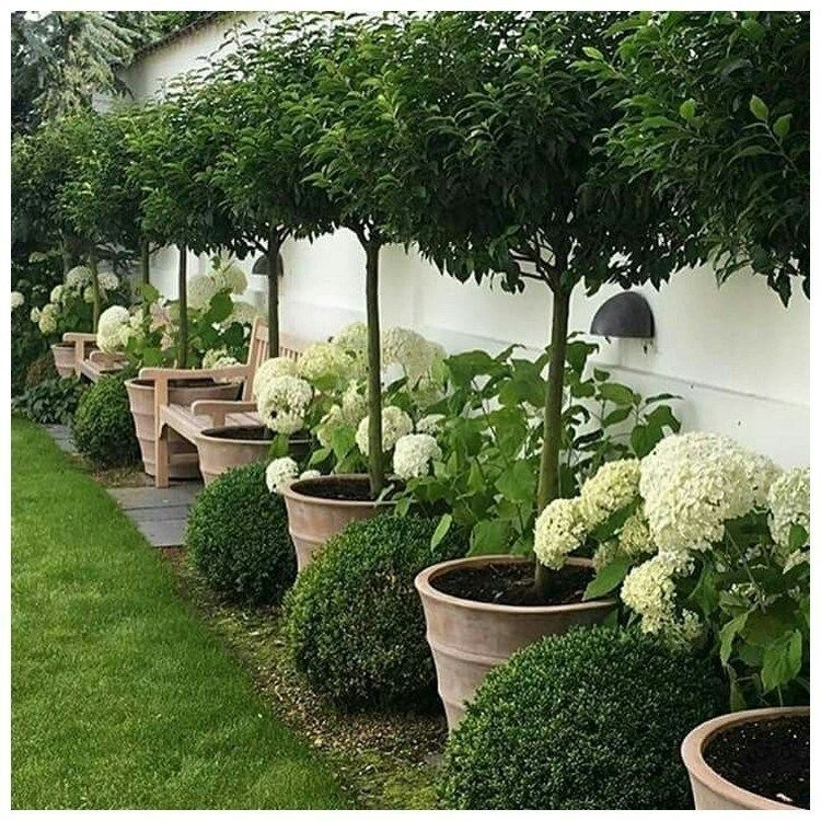 Pretty Front Yard Landscaping Design Ideas For You 16