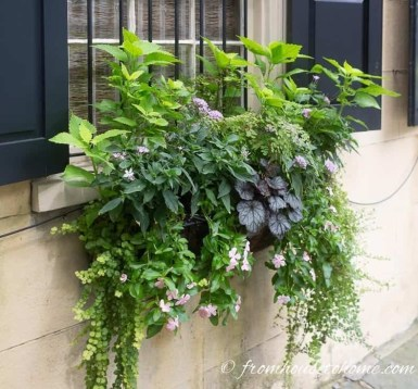 Unique Window Design Ideas With Plant That Make Your Home Cozy More 03