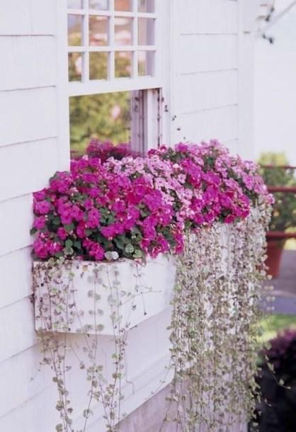 Unique Window Design Ideas With Plant That Make Your Home Cozy More 07
