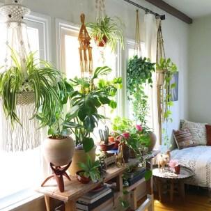 Unique Window Design Ideas With Plant That Make Your Home Cozy More 08