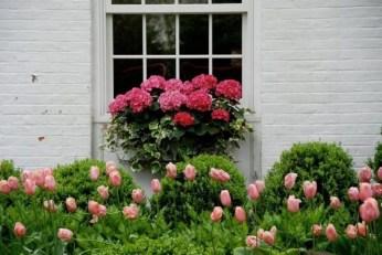 Unique Window Design Ideas With Plant That Make Your Home Cozy More 17