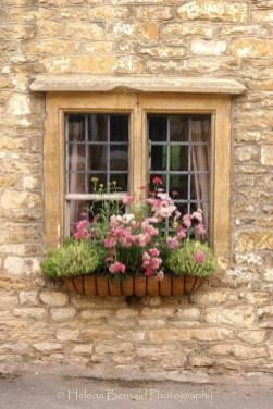 Unique Window Design Ideas With Plant That Make Your Home Cozy More 26