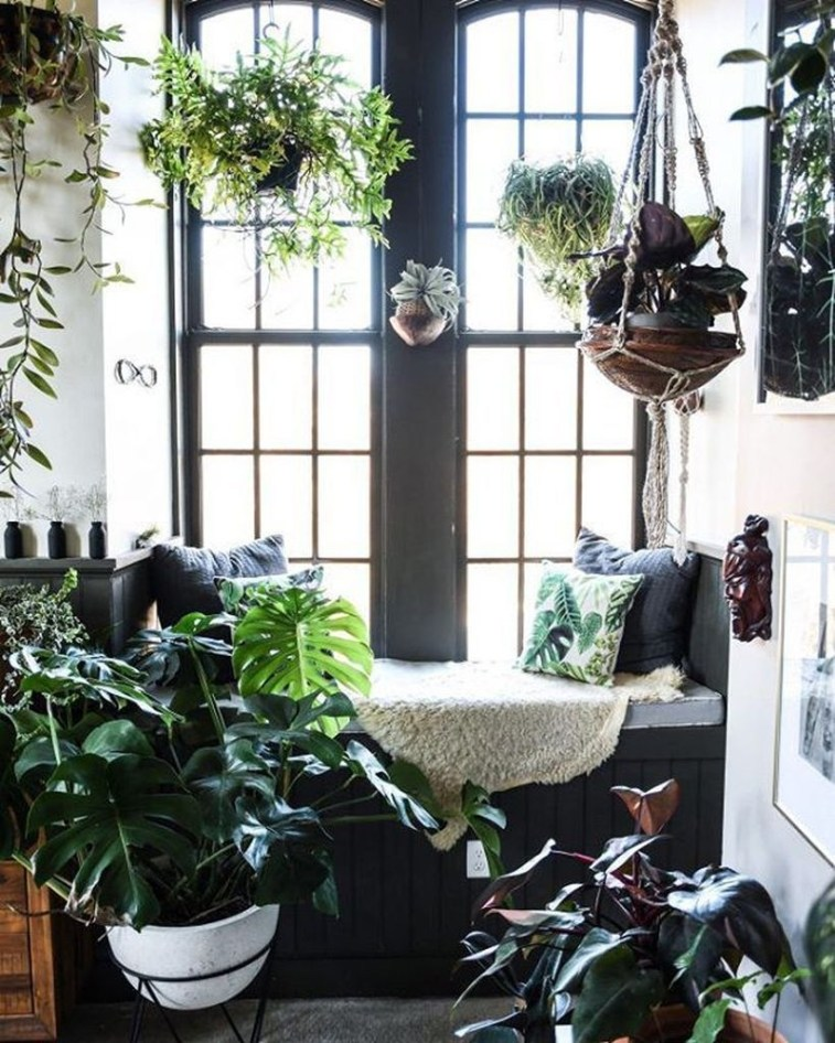 Unique Window Design Ideas With Plant That Make Your Home Cozy More 31