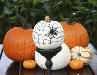 Admiring White And Orange Pumpkin Centerpieces Ideas For Halloween 11