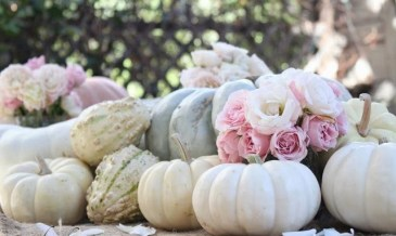 Admiring White And Orange Pumpkin Centerpieces Ideas For Halloween 34