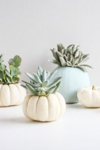 Creative Diy Decor Ideas To Welcome Autumn That Looks Cool 37