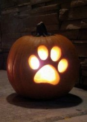 Enchanting Pumpkin Carving Ideas For Halloween In This Year 01
