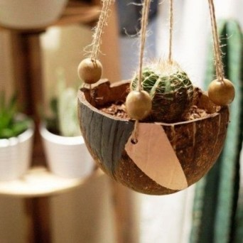 Perfect Diy Coconut Shell Ideas For Everyonen That Simple To Try 15