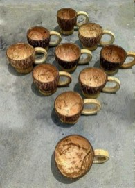 Perfect Diy Coconut Shell Ideas For Everyonen That Simple To Try 18