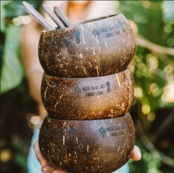 Perfect Diy Coconut Shell Ideas For Everyonen That Simple To Try 35