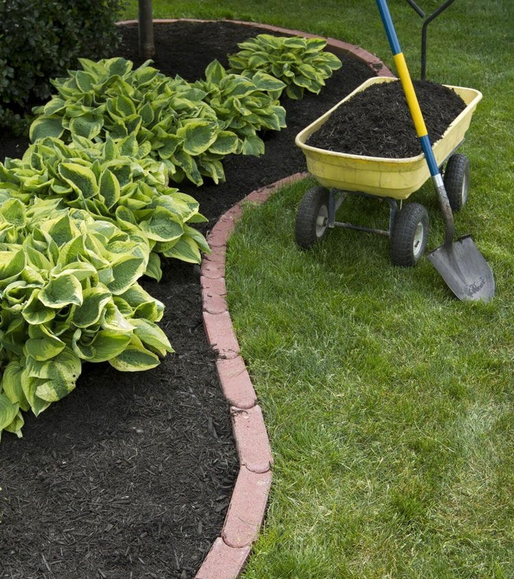 Pretty Lawn Edging Design Ideas For Your Yard To Try 12