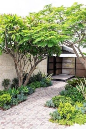 Rustic Small Backyard Design Ideas With Vertical Garden To Try Asap 08