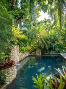 Surprising Tropical Pool Landscaping Design Ideas To Try Soon 13