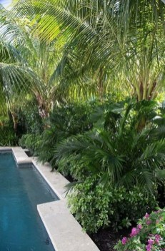 Surprising Tropical Pool Landscaping Design Ideas To Try Soon 29
