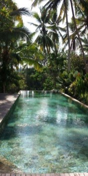 Surprising Tropical Pool Landscaping Design Ideas To Try Soon 32