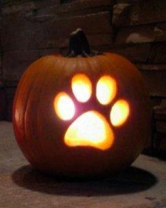 Cozy Pumpkin Carving Design Ideas You Can Do Yourself 14