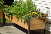 Relaxing Diy Concrete Garden Boxes Ideas To Make Your Home Yard Looks Awesome 37