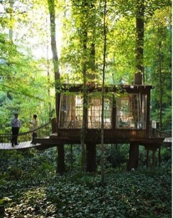 Affordable Tiny House Design Ideas To Live In Nature 16