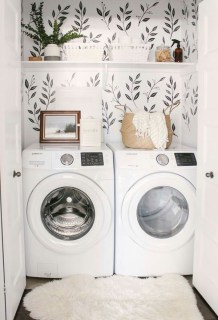 Inexpensive Tiny Laundry Room Design Ideas With Nature Touches 01