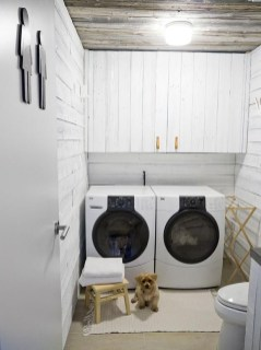 Inexpensive Tiny Laundry Room Design Ideas With Nature Touches 02