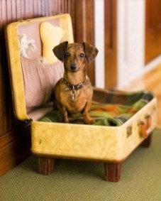 Spectacular Recycled Furniture Design Ideas For Your Pet Feel Happy 13