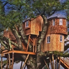 Spectacular Tree Ness House Design Ideas With Organic Architecture Inspired By Tree 03