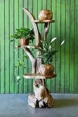 Splendid Driftwood Decor Ideas To Try Right Now 04