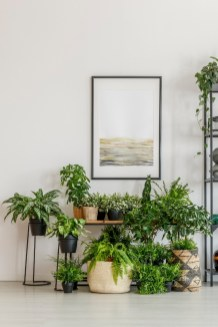 Cool Shady Indoor Garden Design Ideas In Loft Apartment To Try Asap 19