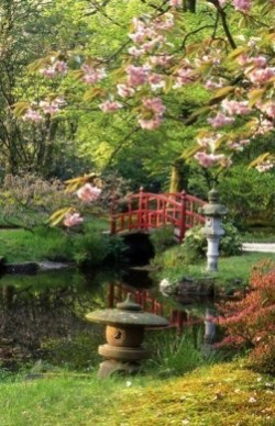 Best Japanese Garden Design Ideas That Looks So Stunning 36