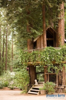 Inspiring Tree House Design Ideas For Wedding To Have 17